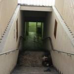 Kummelbacher Hof Juni 2013-0089-20
